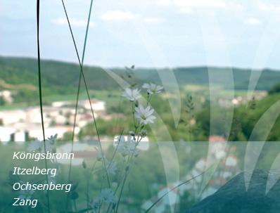 Blumenwiese in Königsbronn